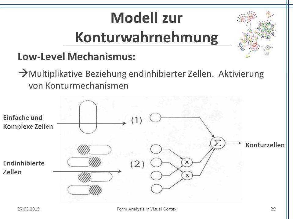Modell zur Konturwahrnehmung Low-Level Mechanismus:  Multiplikative Beziehung endinhibierter Zellen. Aktivierung von Konturmechanismen 27.03.2015Form