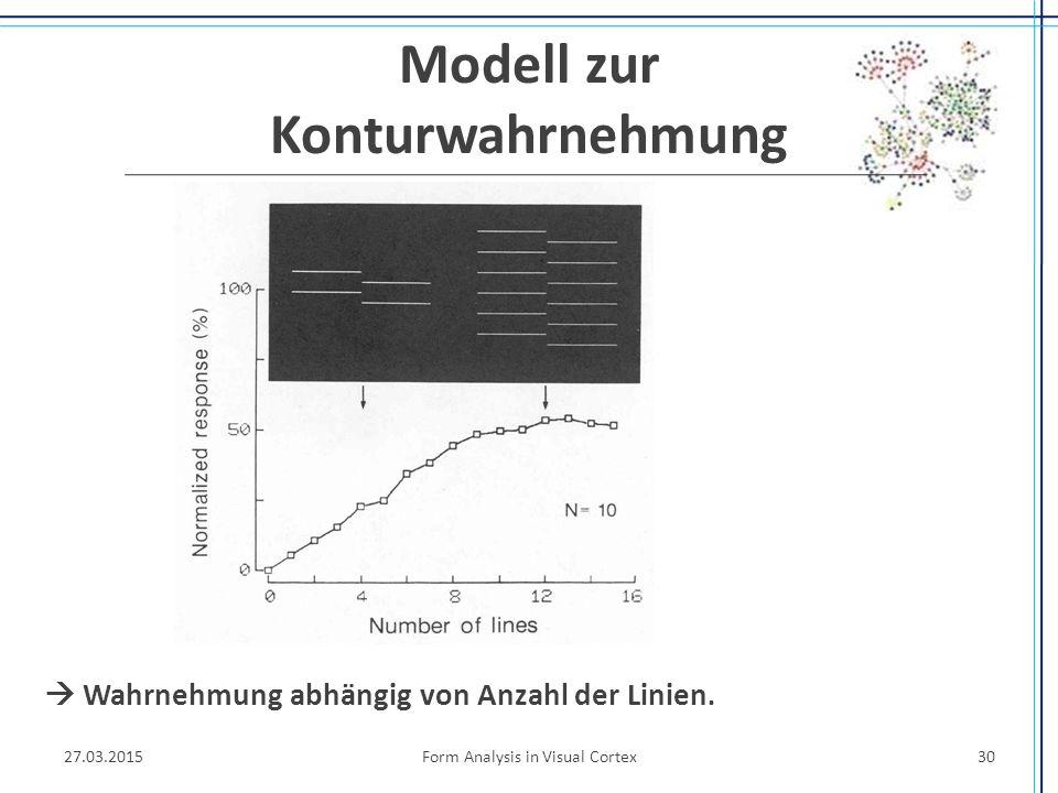 Modell zur Konturwahrnehmung 27.03.2015Form Analysis in Visual Cortex30  Wahrnehmung abhängig von Anzahl der Linien.