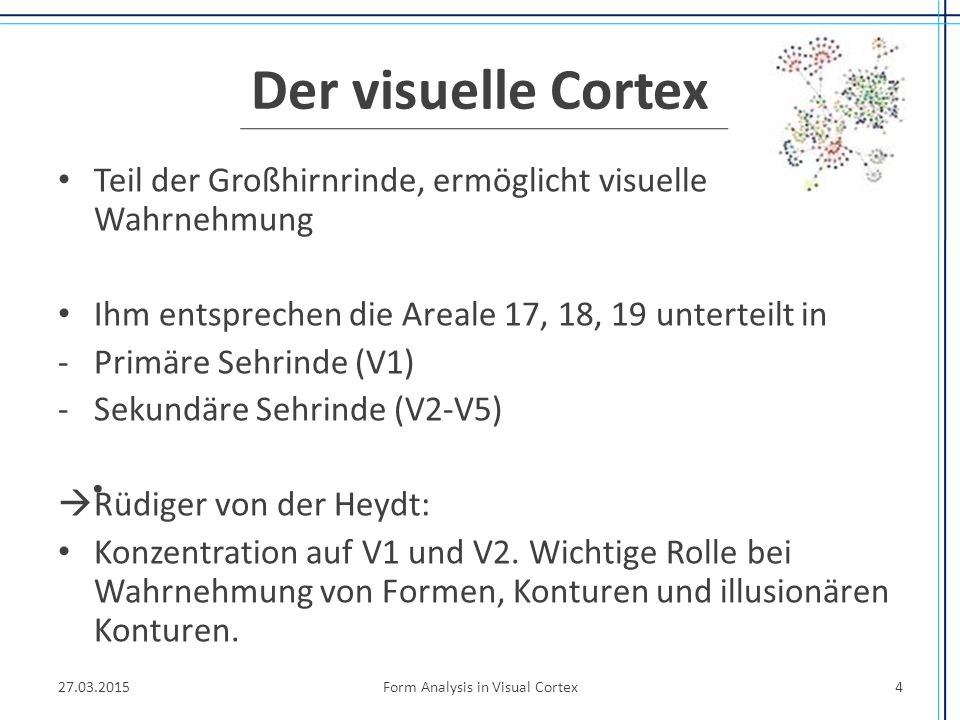 Der visuelle Cortex Teil der Großhirnrinde, ermöglicht visuelle Wahrnehmung Ihm entsprechen die Areale 17, 18, 19 unterteilt in -Primäre Sehrinde (V1)