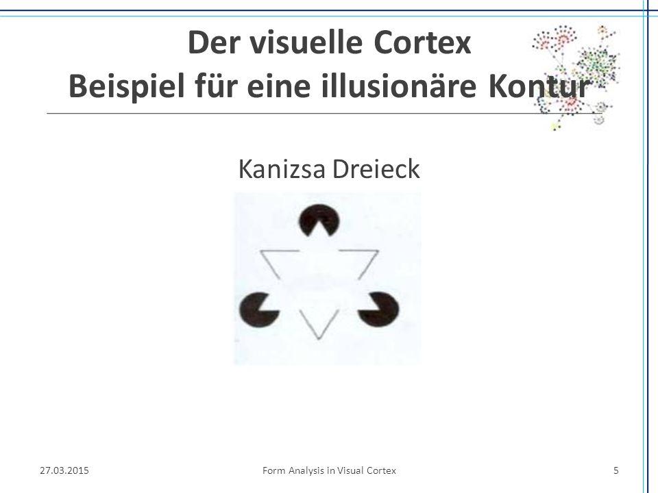 Das Theoretische Level Visuelle Cortex, Interpretation von 3D-Bildern nicht Bildanalyse 27.03.2015Form Analysis in Visual Cortex26