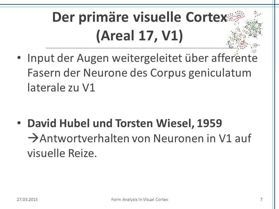 Der primäre visuelle Cortex (Areal 17, V1) Input der Augen weitergeleitet über afferente Fasern der Neurone des Corpus geniculatum laterale zu V1 Davi