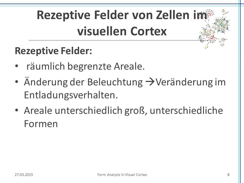 Rezeptive Felder von Zellen im visuellen Cortex Rezeptive Felder: räumlich begrenzte Areale. Änderung der Beleuchtung  Veränderung im Entladungsverha