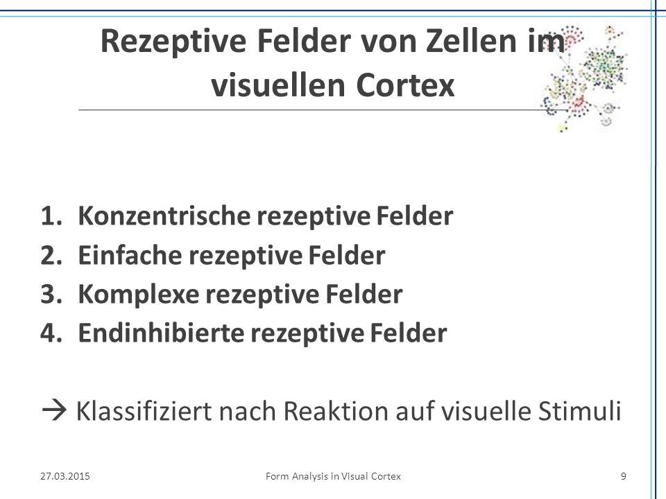 Rezeptive Felder von Zellen im visuellen Cortex 1.Konzentrische rezeptive Felder 2.Einfache rezeptive Felder 3.Komplexe rezeptive Felder 4.Endinhibier