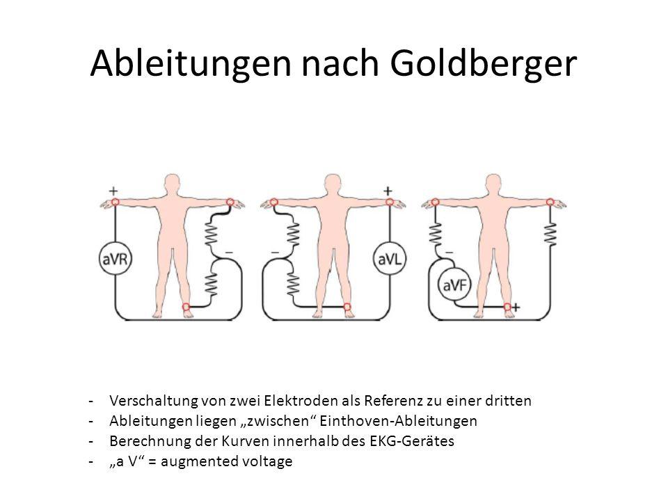 """Ableitungen nach Goldberger -Verschaltung von zwei Elektroden als Referenz zu einer dritten -Ableitungen liegen """"zwischen"""" Einthoven-Ableitungen -Bere"""