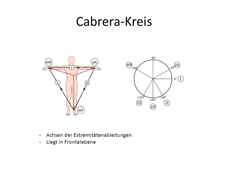 Cabrera-Kreis -Achsen der Extremitätenableitungen -Liegt in Frontalebene