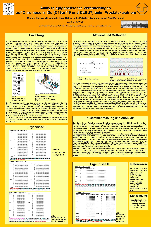 Analyse epigenetischer Veränderungen auf Chromosom 13q (C13orf19 und DLEU7) beim Prostatakarzinom Michael Hering, Uta Schmidt, Katja Robel, Heike Petzold 1, Susanne Füssel, Axel Meye und Manfred P.