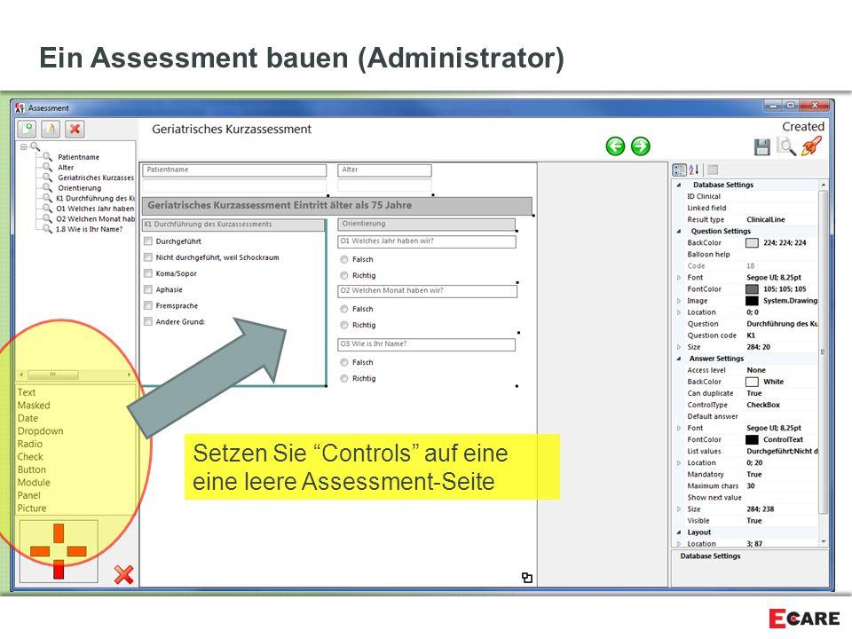 """Ein Assessment bauen (Administrator) Setzen Sie """"Controls"""" auf eine eine leere Assessment-Seite"""