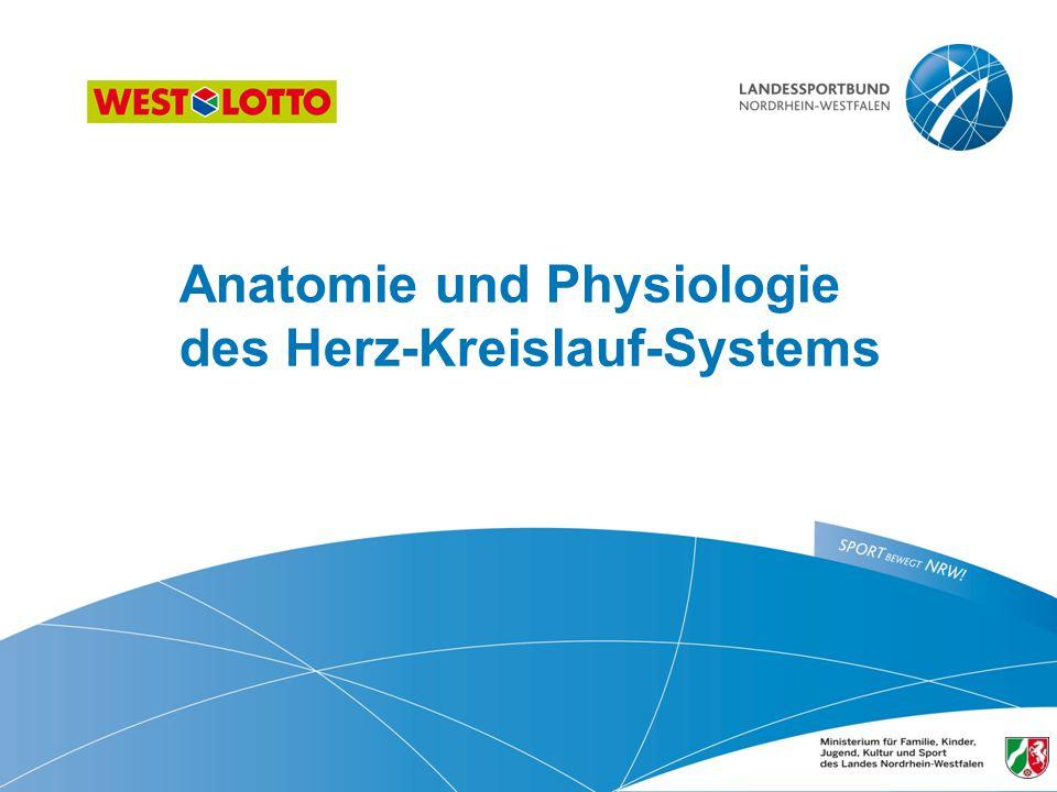 III - 2.01 Anatomie und Physiologie des HKS - Folie 52 Herz-Kreislauf-System - Schema 1./12.