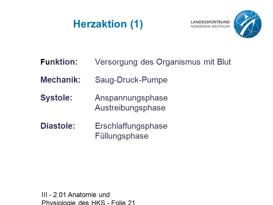 III - 2.01 Anatomie und Physiologie des HKS - Folie 21 Herzaktion (1) Fu nktion:Versorgung des Organismus mit Blut Mechanik: Saug-Druck-Pumpe Systole: