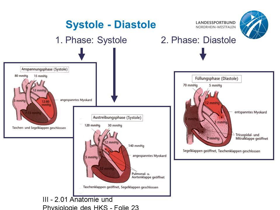 III - 2.01 Anatomie und Physiologie des HKS - Folie 23 Systole - Diastole 1. Phase: Systole2. Phase: Diastole