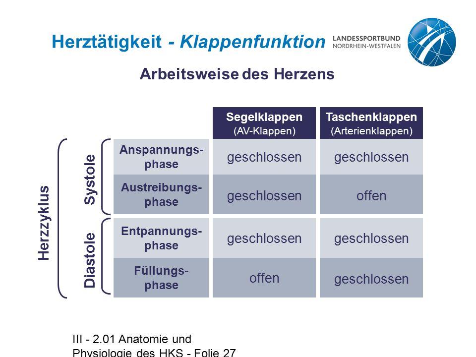 III - 2.01 Anatomie und Physiologie des HKS - Folie 27 Herztätigkeit - Klappenfunktion Anspannungs- phase geschlossen Austreibungs- phase offen Entpan