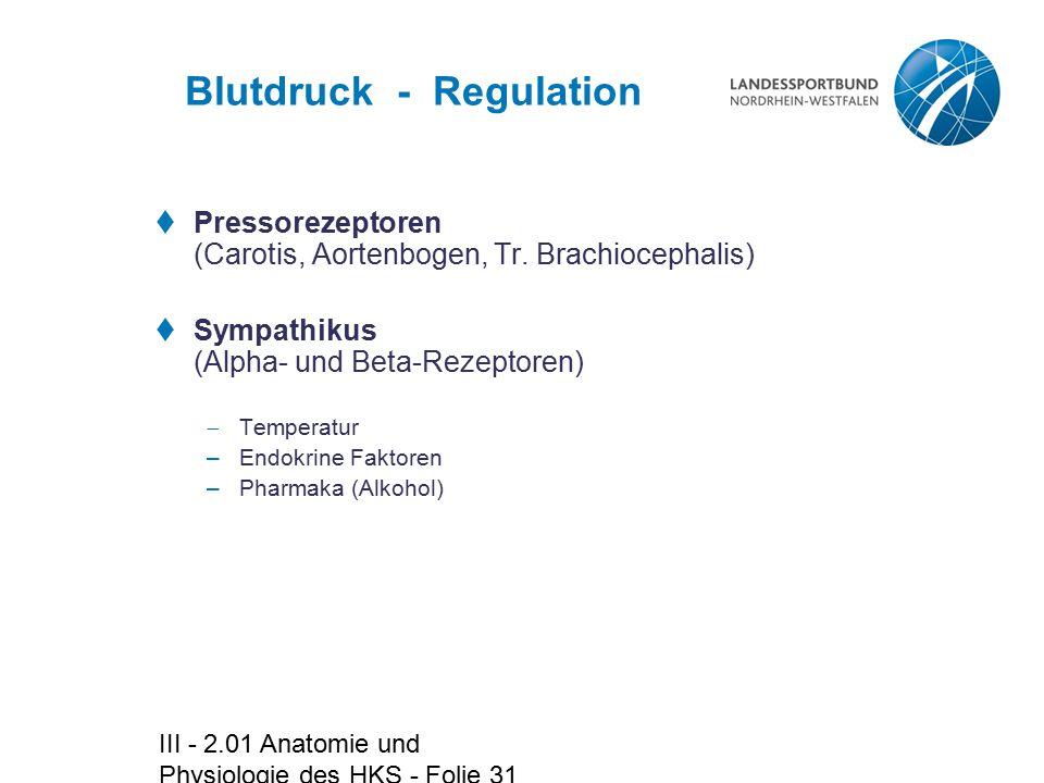III - 2.01 Anatomie und Physiologie des HKS - Folie 31 Blutdruck - Regulation  Pressorezeptoren (Carotis, Aortenbogen, Tr. Brachiocephalis)  Sympath
