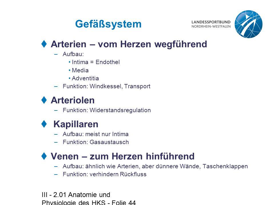 III - 2.01 Anatomie und Physiologie des HKS - Folie 44 Gefäßsystem  Arterien – vom Herzen wegführend –Aufbau: Intima = Endothel Media Adventitia –Fun