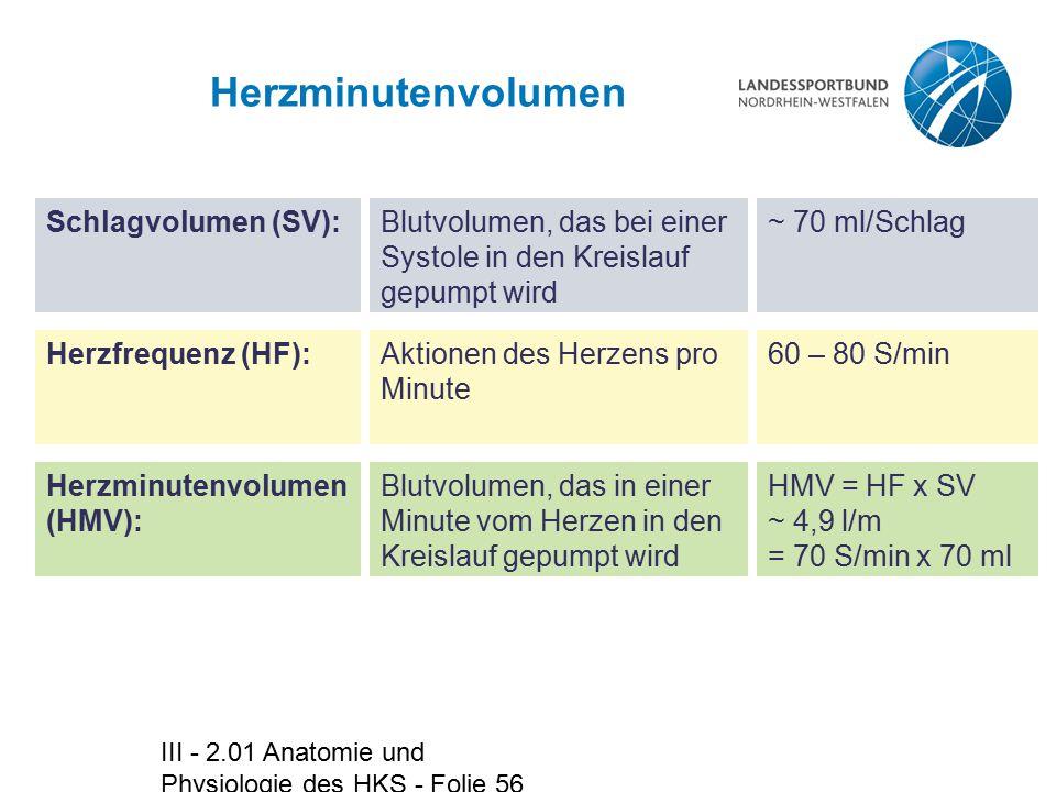 III - 2.01 Anatomie und Physiologie des HKS - Folie 56 Herzminutenvolumen Schlagvolumen (SV):Blutvolumen, das bei einer Systole in den Kreislauf gepum