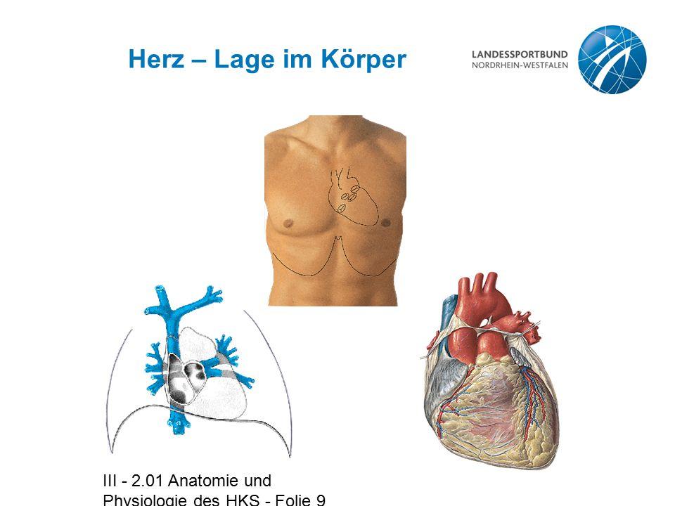 III - 2.01 Anatomie und Physiologie des HKS - Folie 30 Blutdruck - Werte Systolischer Druck Diastolischer Druck Mittlerer arterieller Druck 120 mmHg 80 mmHg 100 mmHg