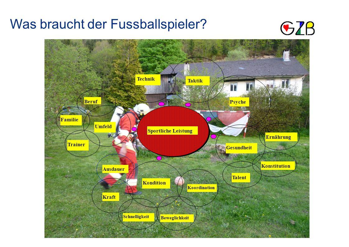 Sportliche Leistung Taktik Technik Umfeld Kondition Gesundheit Psyche Ausdauer Konstitution Talent Beruf Familie Trainer Ernährung Kraft Schnelligkeit Beweglichkeit Koordination Was braucht der Fussballspieler?