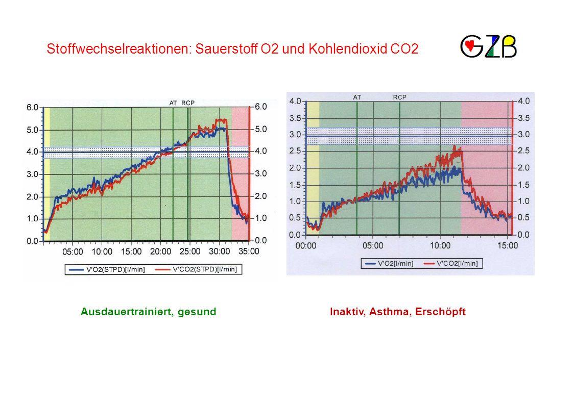 Ausdauertrainiert, gesundInaktiv, Asthma, Erschöpft Stoffwechselreaktionen: Sauerstoff O2 und Kohlendioxid CO2