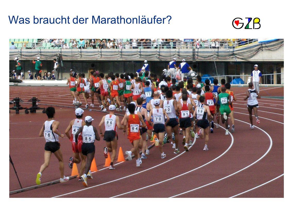 Sportliche Leistung Taktik Technik Umfeld Kondition Gesundheit Psyche Ausdauer Konstitution Talent Beruf Familie Trainer Ernährung Kraft Schnelligkeit Beweglichkeit Koordination Was braucht der Marathonläufer?