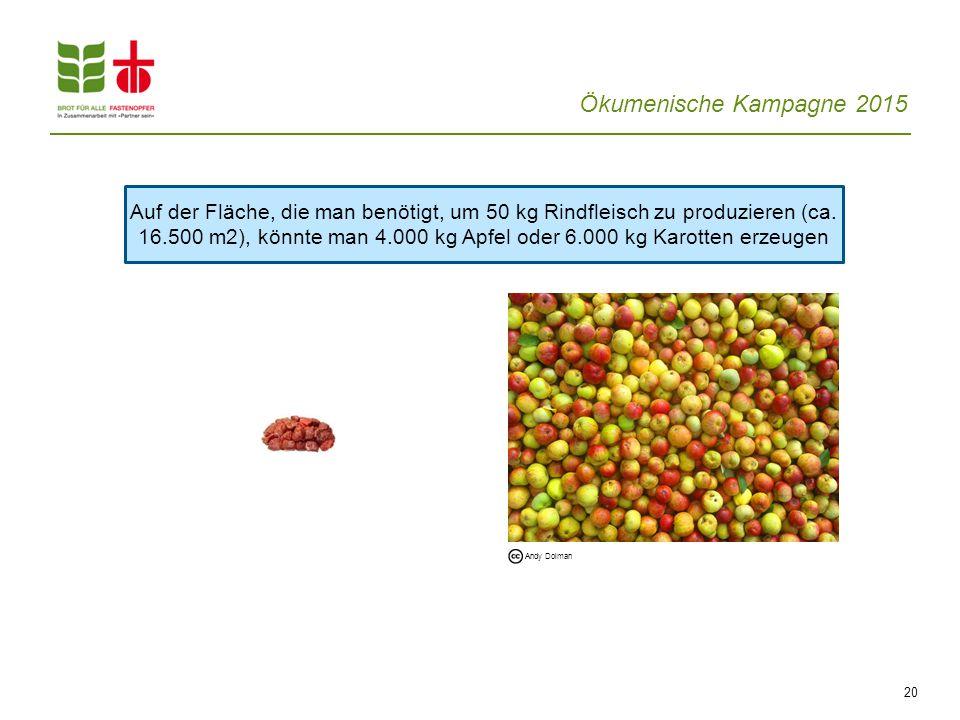 Ökumenische Kampagne 2015 20 Auf der Fläche, die man benötigt, um 50 kg Rindfleisch zu produzieren (ca. 16.500 m2), könnte man 4.000 kg Apfel oder 6.0