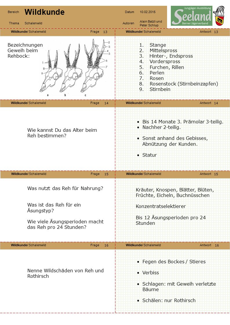 Wildkunde/ SchalenwildFrageWildkunde/ SchalenwildAntwort Wildkunde/ SchalenwildFrageWildkunde/ SchalenwildAntwort Wildkunde/ SchalenwildFrageWildkunde/ SchalenwildAntwort Wildkunde/ SchalenwildFrageWildkunde/ SchalenwildAntwort Bereich Wildkunde Datum10.02.2015 ThemaSchalenwildAutoren Alain Batzli und Peter Schlup 17 18 20 19 18 19 20 Erkläre die Fortpflanzung der Rehe: Bezeichnung der Rehe verschiedenen Alters: Weibliche Tiere.