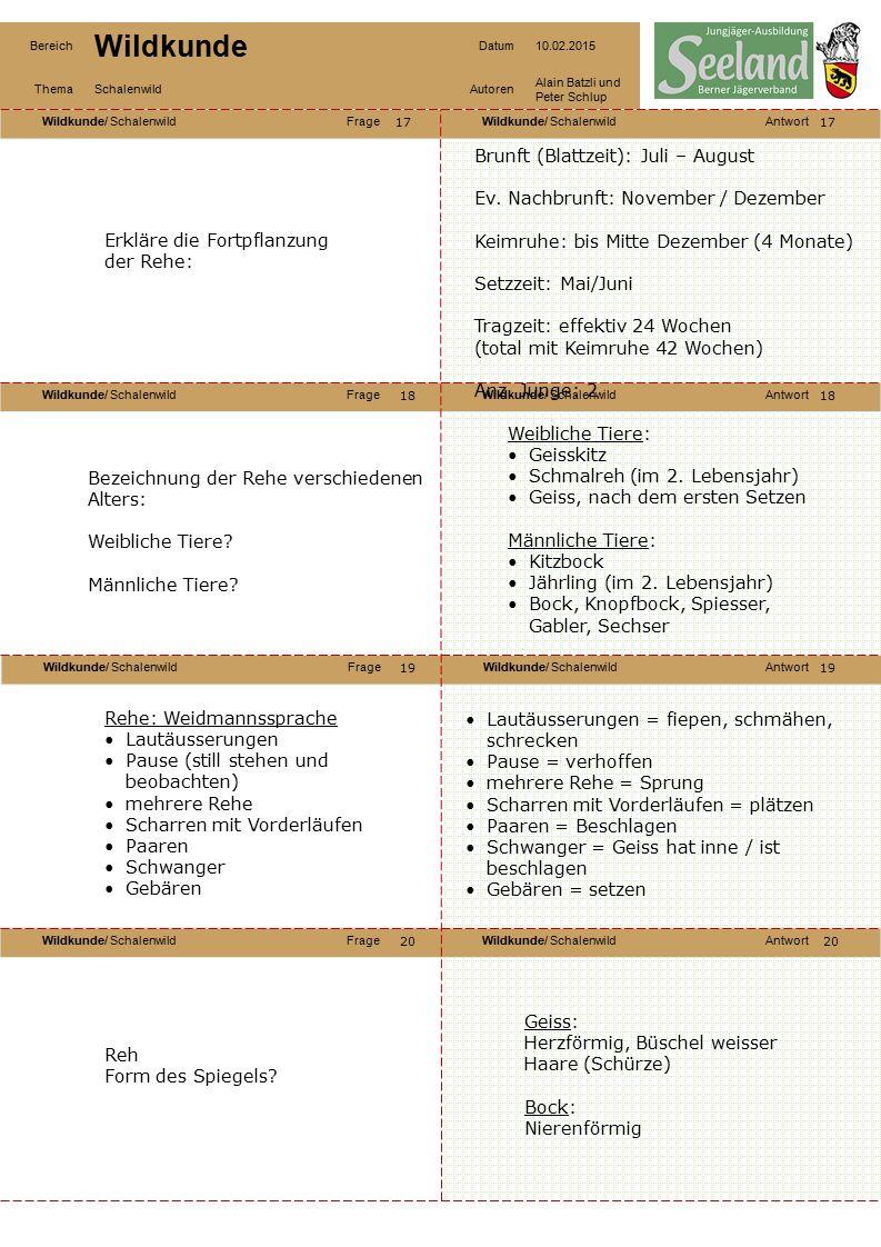 Wildkunde/ SchalenwildFrageWildkunde/ SchalenwildAntwort Wildkunde/ SchalenwildFrageWildkunde/ SchalenwildAntwort Wildkunde/ SchalenwildFrageWildkunde/ SchalenwildAntwort Wildkunde/ SchalenwildFrageWildkunde/ SchalenwildAntwort Bereich Wildkunde Datum10.02.2015 ThemaSchalenwildAutoren Alain Batzli und Peter Schlup 21 22 24 23 22 23 24 Nenne wichtige Merkmale der Gämse: Gämse: Wie unterscheidest Du eine Geiss von einem Bock.