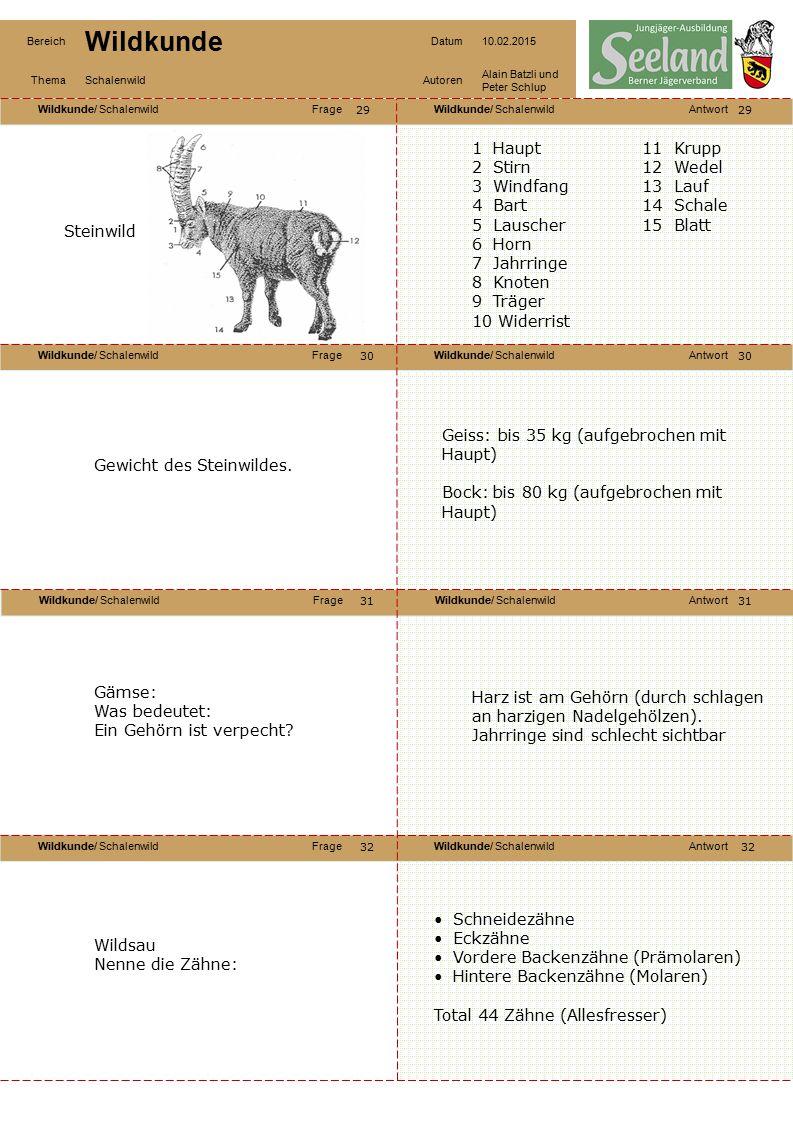 Wildkunde/ SchalenwildFrageWildkunde/ SchalenwildAntwort Wildkunde/ SchalenwildFrageWildkunde/ SchalenwildAntwort Wildkunde/ SchalenwildFrageWildkunde/ SchalenwildAntwort Wildkunde/ SchalenwildFrageWildkunde/ SchalenwildAntwort Bereich Wildkunde Datum10.02.2015 ThemaSchalenwildAutoren Alain Batzli und Peter Schlup 33 34 36 35 34 35 36 Nenne Trophäen der Paarhufer: Hirsch: Geweih, Grandeln, Leder Reh: Geweih Gämse: Gehörn, Gamsbart, Bezoarkugeln Steinbock: Gehörn, Bezoarkugeln Wildschwein: Waffen, Schwarte, Federn (Saubart) 1.Teller (Ohren) 2.Lichter 3.Waffen 4.Wurf (Rüssel) 5.Gebrech (Maul) 6.Läufe 7.Pürzel Zu welcher Familie gehört die Wildsau.