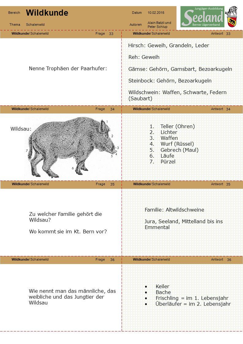 Wildkunde/ SchalenwildFrageWildkunde/ SchalenwildAntwort Wildkunde/ SchalenwildFrageWildkunde/ SchalenwildAntwort Wildkunde/ SchalenwildFrageWildkunde/ SchalenwildAntwort Wildkunde/ SchalenwildFrageWildkunde/ SchalenwildAntwort Bereich Wildkunde Datum10.02.2015 ThemaSchalenwildAutoren Alain Batzli und Peter Schlup 37 38 40 39 38 39 40 Wie schwer wird eine Wildsau.