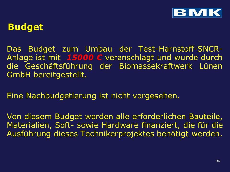 Budget Das Budget zum Umbau der Test-Harnstoff-SNCR- Anlage ist mit 15000 € veranschlagt und wurde durch die Geschäftsführung der Biomassekraftwerk Lü