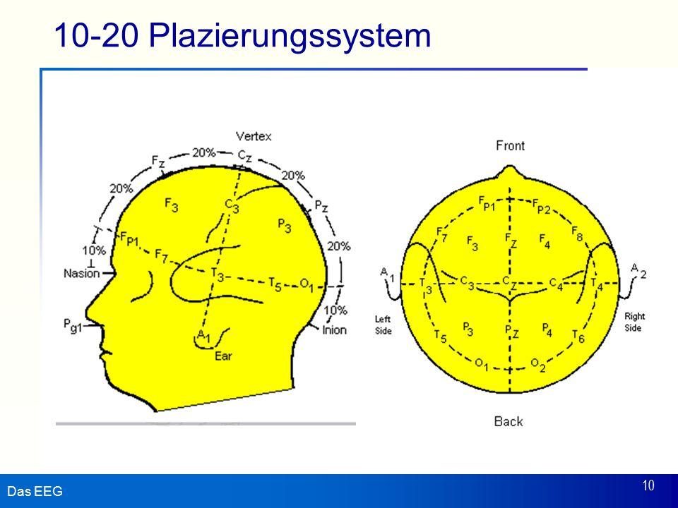 Das EEG 10 10-20 Plazierungssystem