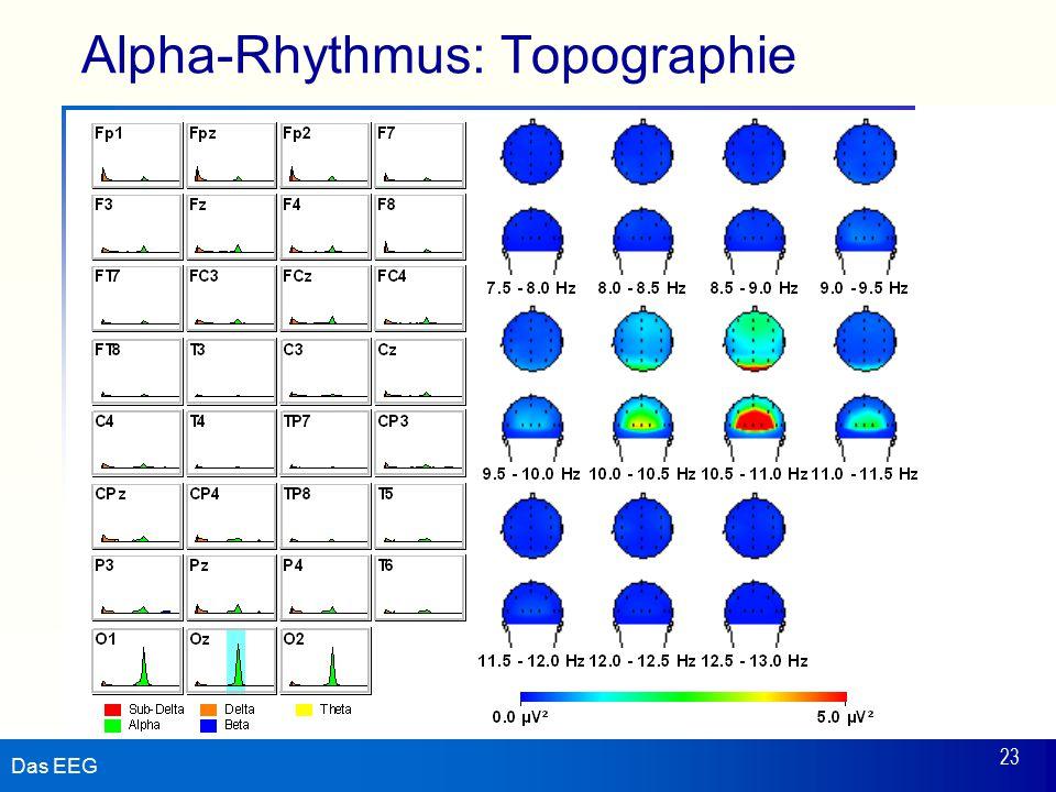Das EEG 23 Alpha-Rhythmus: Topographie