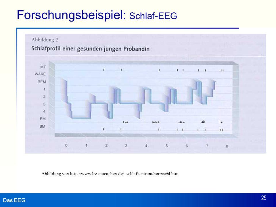 Das EEG 25 Forschungsbeispiel: Schlaf-EEG Abbildung von http://www.lrz-muenchen.de/~schlafzentrum/normschl.htm