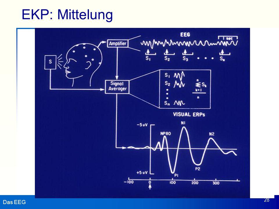 Das EEG 28 EKP: Mittelung