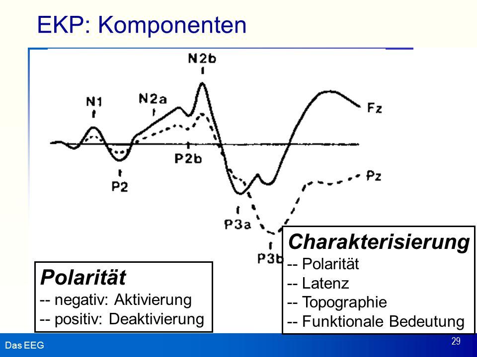 Das EEG 29 EKP: Komponenten Polarität -- negativ: Aktivierung -- positiv: Deaktivierung Charakterisierung -- Polarität -- Latenz -- Topographie -- Fun