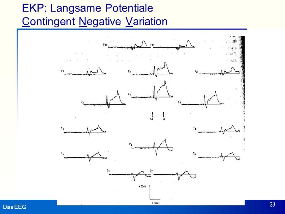 Das EEG 33 EKP: Langsame Potentiale Contingent Negative Variation