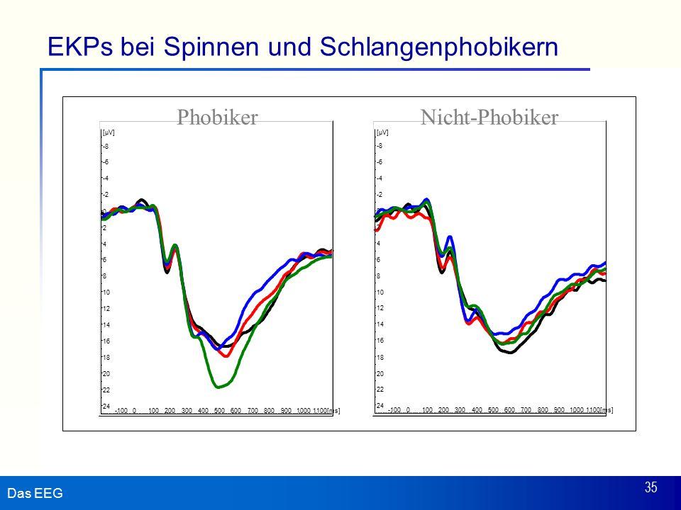 Das EEG 35 EKPs bei Spinnen und Schlangenphobikern 24 22 20 18 16 14 12 10 8 6 4 2 0 -2 -4 -6 -8 [µV] -100010020030040050060070080090010001100[ms] 24