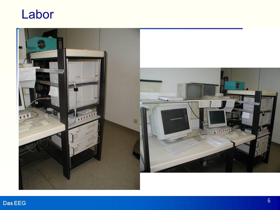 Das EEG 6 Labor