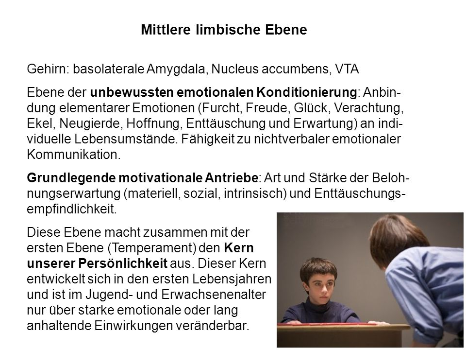 Mittlere limbische Ebene Gehirn: basolaterale Amygdala, Nucleus accumbens, VTA Ebene der unbewussten emotionalen Konditionierung: Anbin- dung elementa