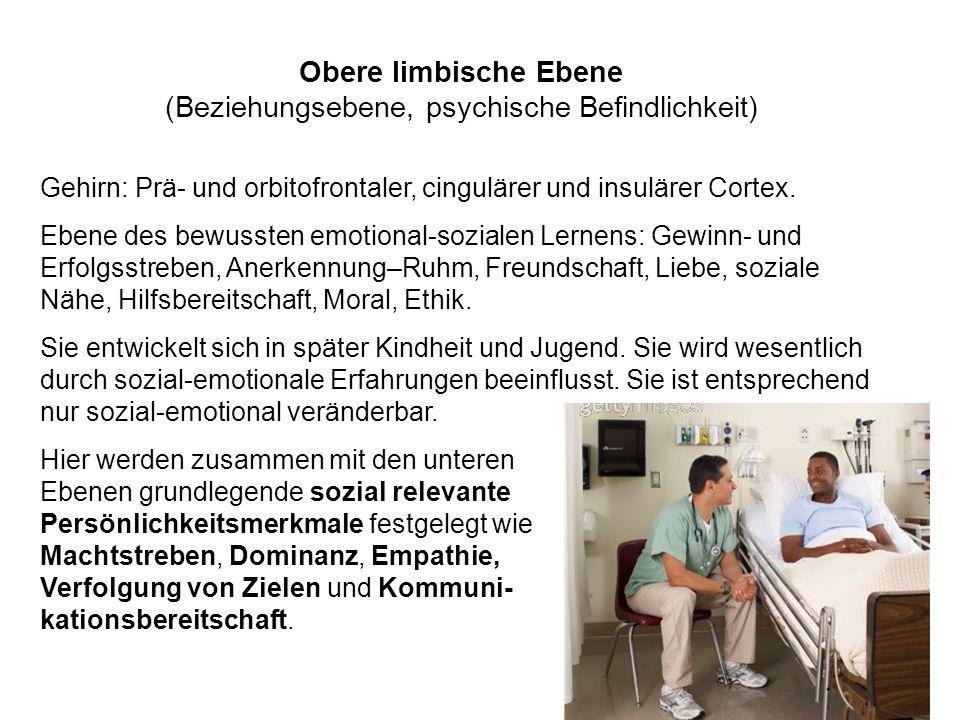 Obere limbische Ebene (Beziehungsebene, psychische Befindlichkeit) Gehirn: Prä- und orbitofrontaler, cingulärer und insulärer Cortex. Ebene des bewuss