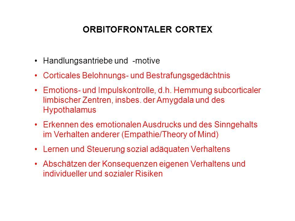 Handlungsantriebe und -motive Corticales Belohnungs- und Bestrafungsgedächtnis Emotions- und Impulskontrolle, d.h. Hemmung subcorticaler limbischer Ze