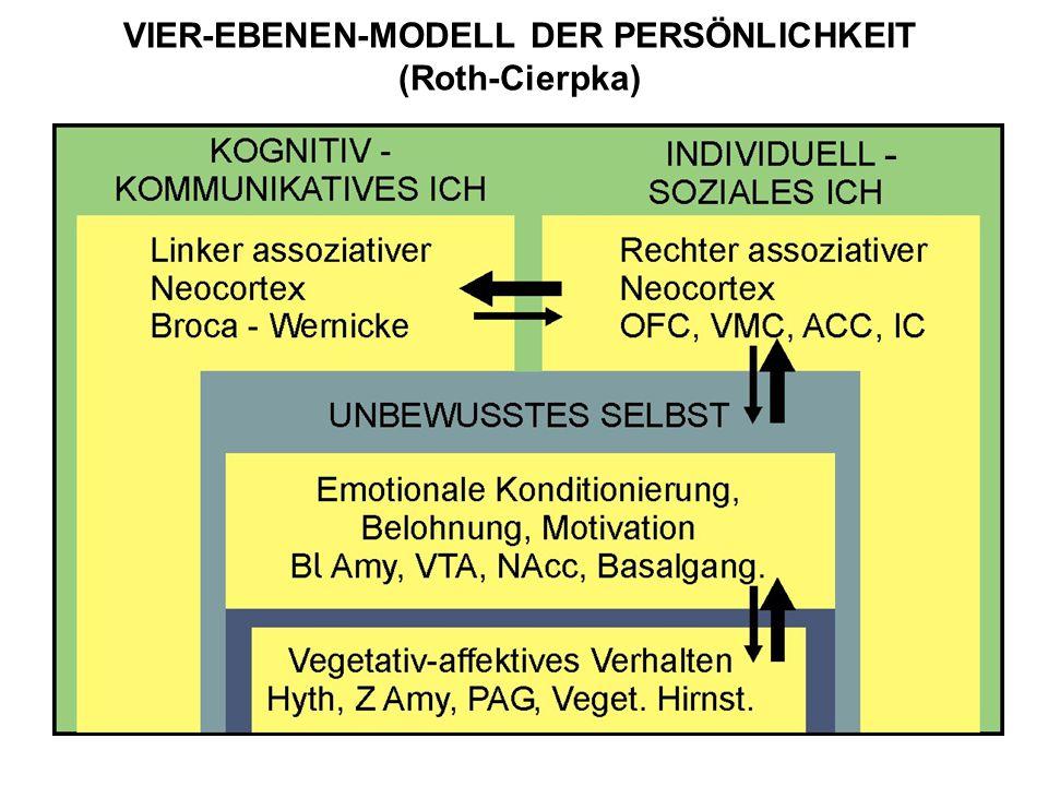 VIER-EBENEN-MODELL DER PERSÖNLICHKEIT (Roth-Cierpka) -