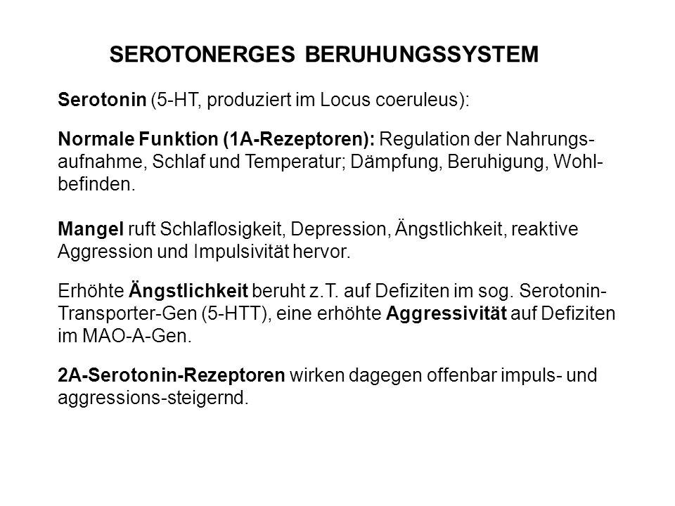 Serotonin (5-HT, produziert im Locus coeruleus): Normale Funktion (1A-Rezeptoren): Regulation der Nahrungs- aufnahme, Schlaf und Temperatur; Dämpfung,