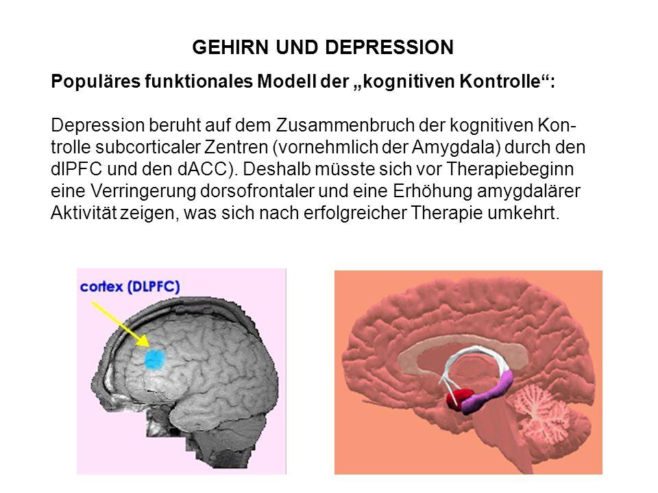 """GEHIRN UND DEPRESSION Populäres funktionales Modell der """"kognitiven Kontrolle"""": Depression beruht auf dem Zusammenbruch der kognitiven Kon- trolle sub"""