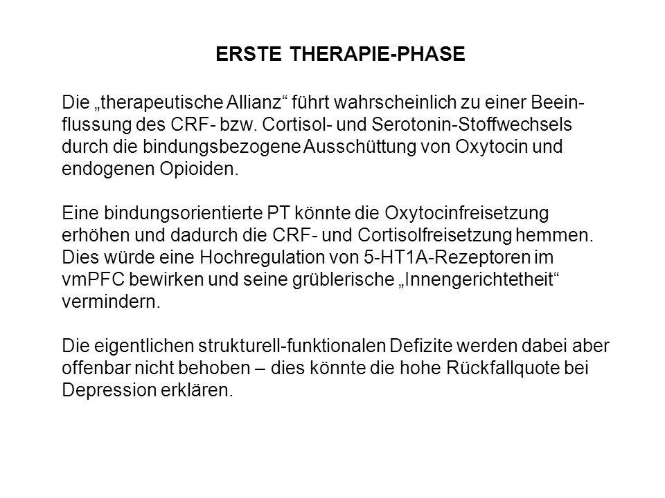 """Die """"therapeutische Allianz"""" führt wahrscheinlich zu einer Beein- flussung des CRF- bzw. Cortisol- und Serotonin-Stoffwechsels durch die bindungsbezog"""