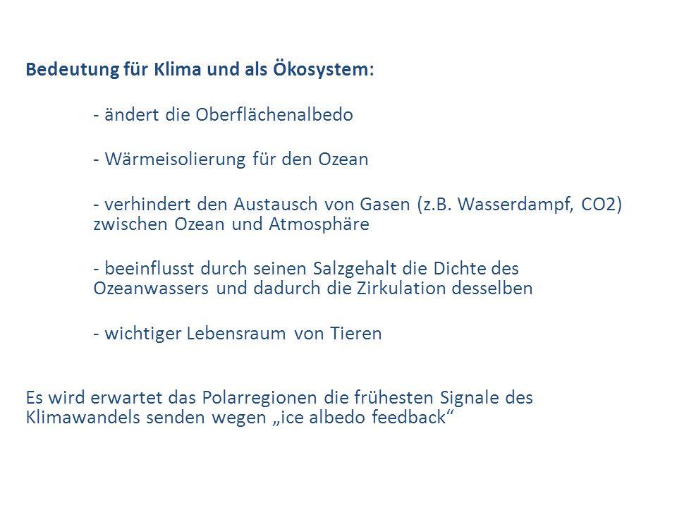 Bedeutung für Klima und als Ökosystem: - ändert die Oberflächenalbedo - Wärmeisolierung für den Ozean - verhindert den Austausch von Gasen (z.B. Wasse