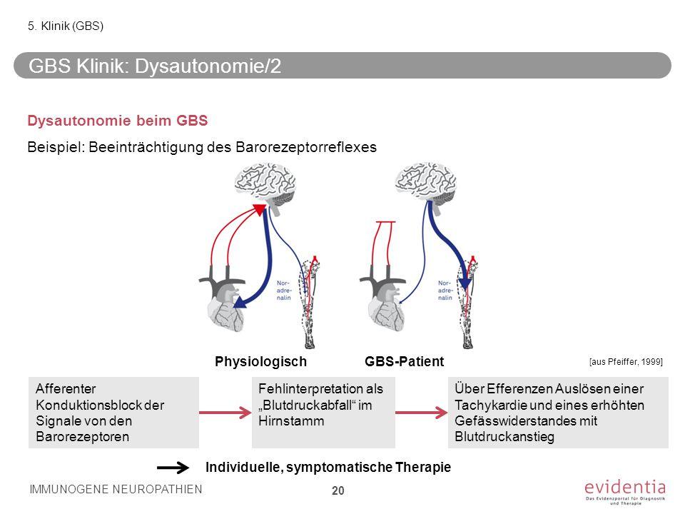 GBS Klinik: Dysautonomie/2 Dysautonomie beim GBS Beispiel: Beeinträchtigung des Barorezeptorreflexes IMMUNOGENE NEUROPATHIEN 20 5. Klinik (GBS) Affere