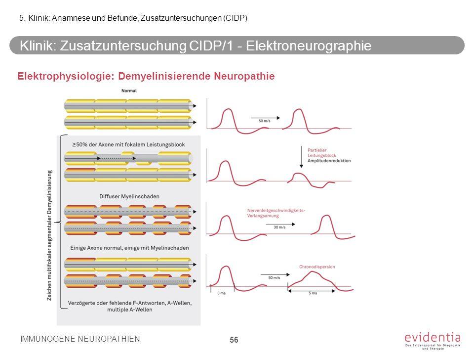 Klinik: Zusatzuntersuchung CIDP/1 - Elektroneurographie IMMUNOGENE NEUROPATHIEN 56 5. Klinik: Anamnese und Befunde, Zusatzuntersuchungen (CIDP) Elektr