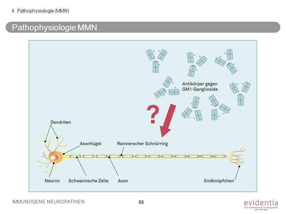 Pathophysiologie MMN IMMUNOGENE NEUROPATHIEN 88 4. Pathophysiologie (MMN)