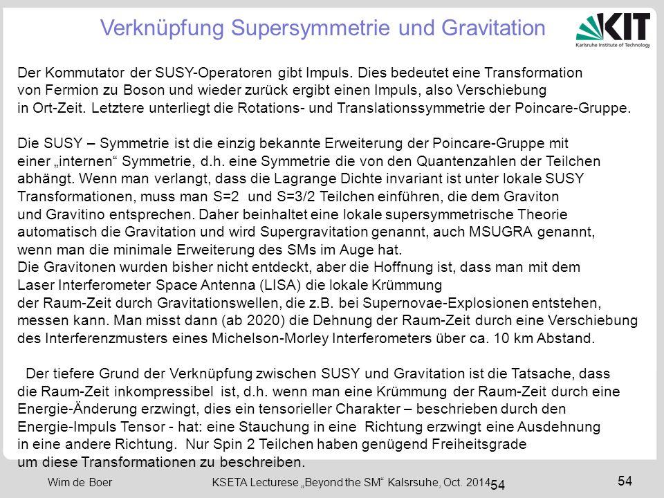 "55 Wim de Boer KSETA Lecturese ""Beyond the SM Kalsrsuhe, Oct."