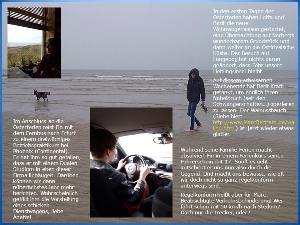 Während seine Familie Ferien macht absolviert Fin in einem Ferienkurs seinen Führerschein mit 17.
