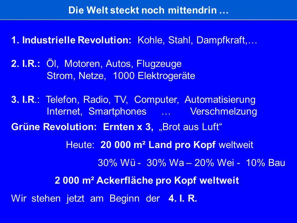 Die Welt steckt noch mittendrin … 1. Industrielle Revolution: Kohle, Stahl, Dampfkraft,… 2. I.R.: Öl, Motoren, Autos, Flugzeuge Strom, Netze, 1000 Ele